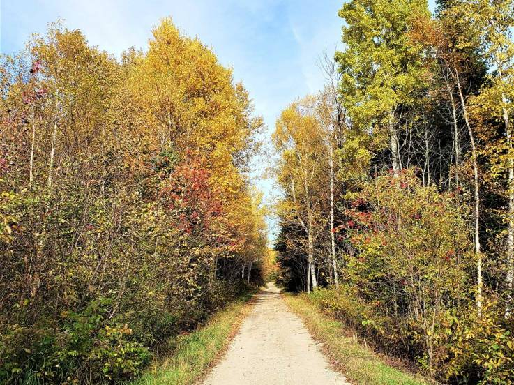 Lot and land for sale - Baie-Saint-Paul, Charlevoix (SP659)