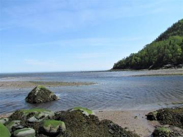 Lot and land for sale - Saint-Siméon, Charlevoix (SS041)