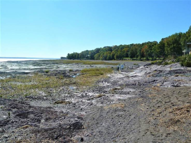 Lot and land for sale - Île-d'Orléans, Old Quebec City (IO008)