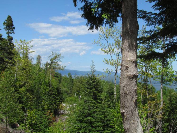 3 - Lot and land for sale, Saint-Irénée (Code - si144, Charlevoix)