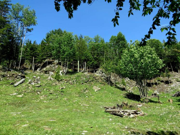 5 - Lot and land for sale, Saint-Irénée (Code - si144, Charlevoix)