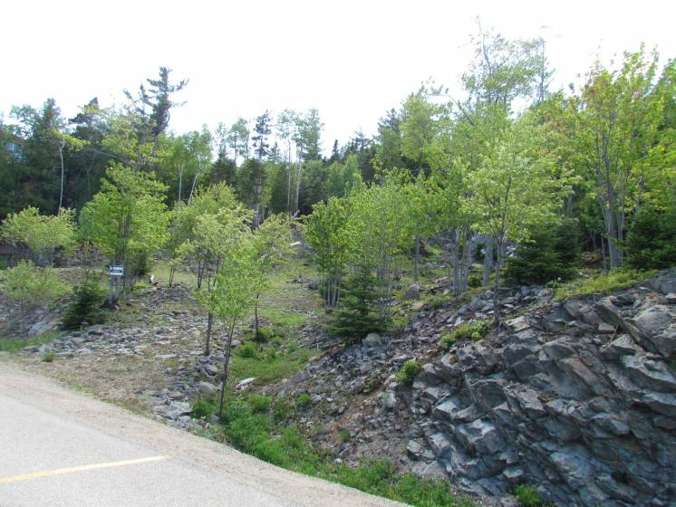 8 - Lot and land for sale, Saint-Irénée (Code - si144, Charlevoix)