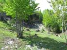 9 - Lot and land for sale, Saint-Irénée (Code - si144, Charlevoix)