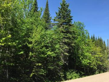 Lot and land for sale - Petite-Rivière-Saint-François, Charlevoix (PR517)